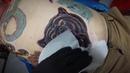 Татуировка медведь на животе. Oldshool color tattoo Bear. Pattaya Tattoo Studio