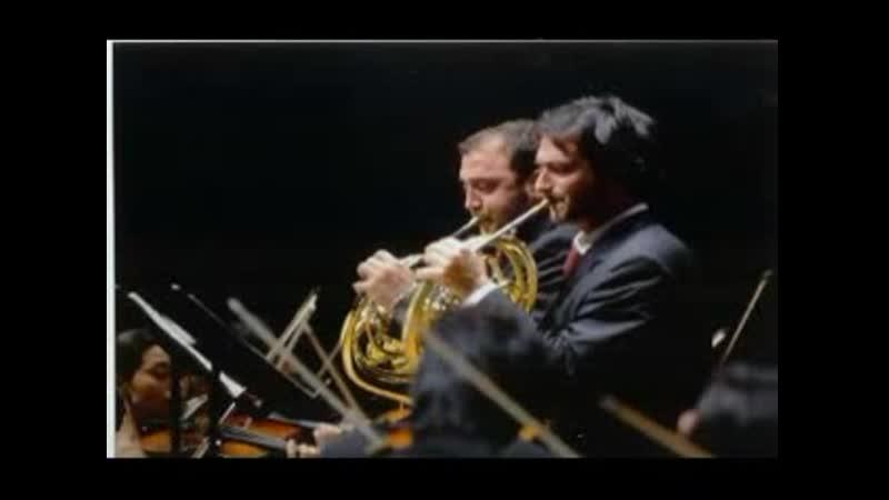 Alessio e Sabino Allegrini Haydn conc per 2 corni PARTE 1