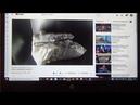 Инструкция друзьям как смотреть мои видео в социальных сетях. Как поделиться видео из ютуба.