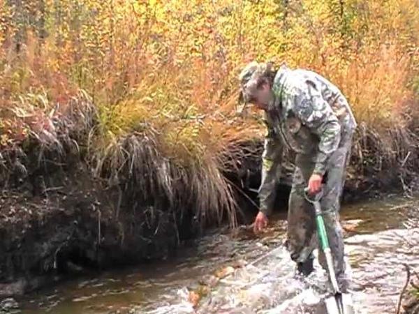 Обогащение на золото Канада Юкон The enrichment of gold Canada Yukon