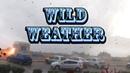 Wild Weather Compilation