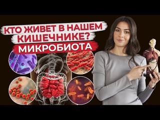 Микробиота кишечника - мир внутри нас! / Как восстановить микрофлору кишечника?