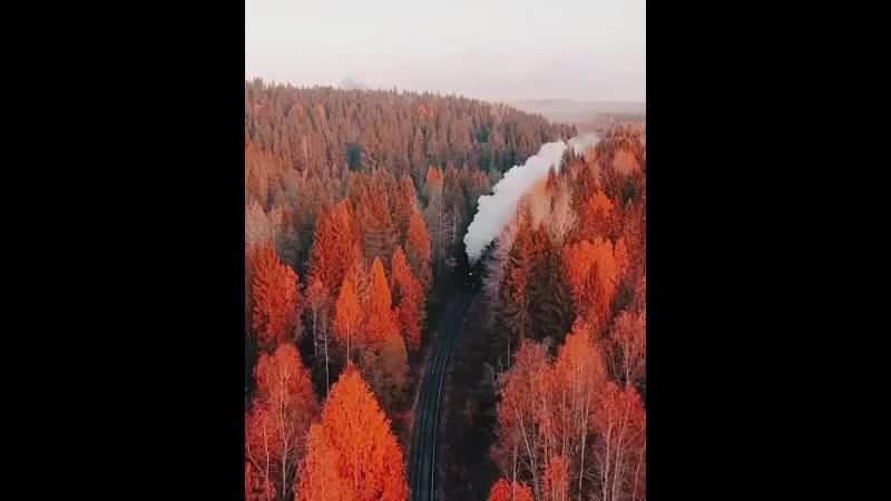 Дорога в осень mp4