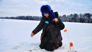 КРУТИТ ДО КОНЦА! Выставила жерлицы на болоте. Зимняя рыбалка 2021 #224