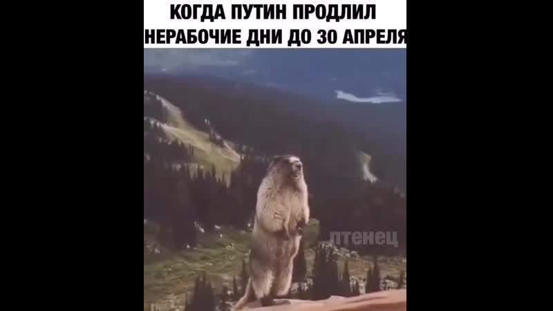 Video 074776bcf0c02f19de79b13667298ab6