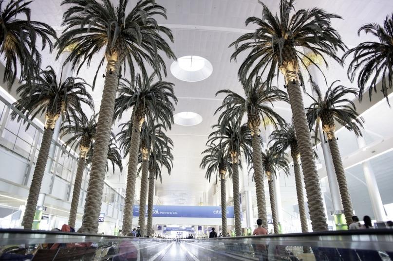 Невероятные аэропорты, в которые точно захочется вернуться, изображение №16