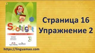 Spotlight 3 класс Workbook страница 16 номер 2 ГДЗ решебник