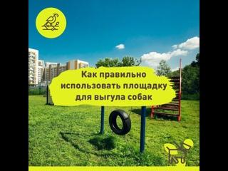 Правила пользования площадкой для выгула собак