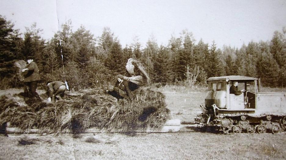 Фото 1960-ых годов, уборка снопов возле деревни