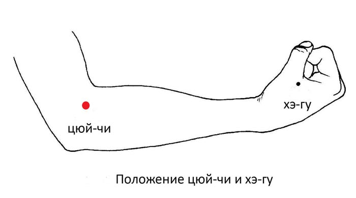 Как запустить кишечник?, изображение №2