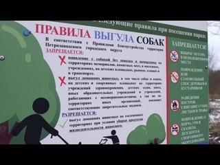 Правила выгула собак появились в парках Петрозаводска 2020 Карелия
