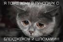 Фотоальбом Андрея Баса