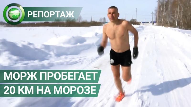 Морж из Башкирии ежедневно пробегает до 20 км на морозе в шортах. ФАН-ТВ