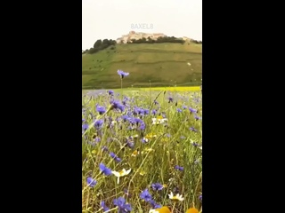 Video by BELL' ITALIA