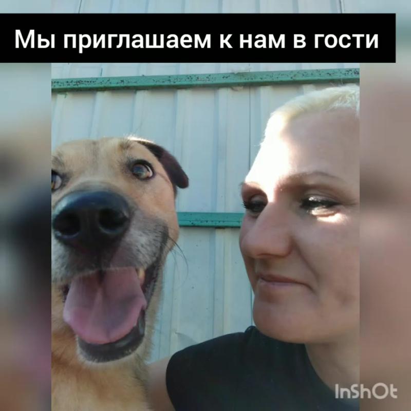 InShot_20200823_151204350.mp4