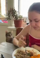 id_82228 С появлением кота ты никогда не будешь есть в одиночестве 😁  #юмор@bon