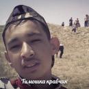 Персональный фотоальбом Тимура Ярашева