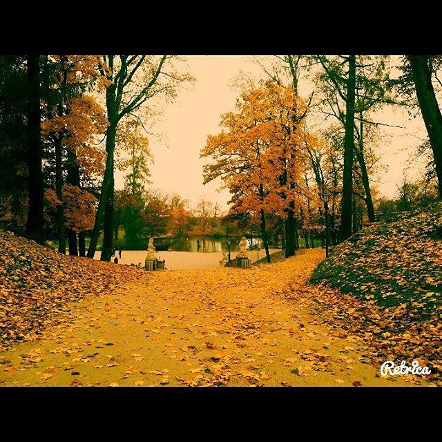 фото из альбома Alisa Jeromane №4