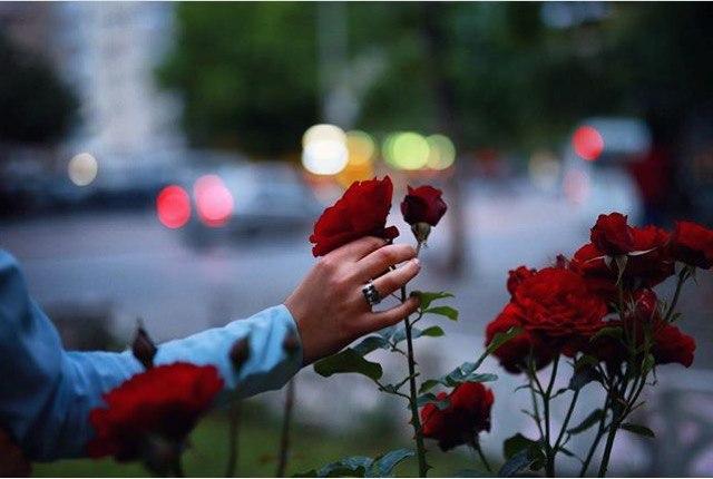 фото из альбома Марины Милославской №1