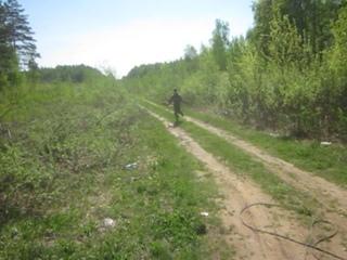 12 МАЯ.  Следовая работа в лесисто - болотистой  местности .