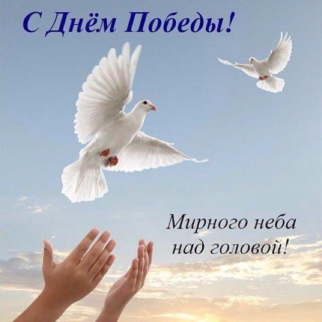 фото из альбома Оксаны Кононенко №7