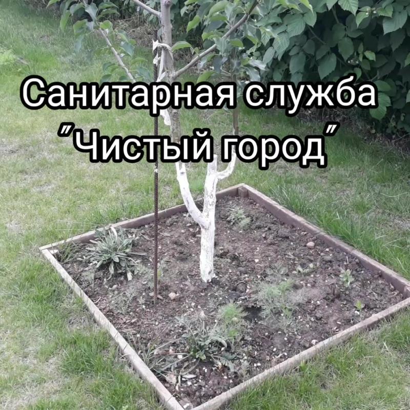 InShot_20200611_110836053.mp4