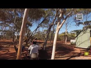 Австралийские золотоискатели (7-я серия) (16+) 2020