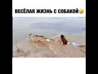 Видео от Василий Иванович