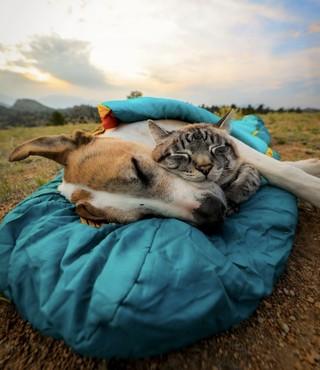 Желаем вам уютных выходных!