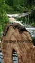 Фотоальбом Виктории Ивановой