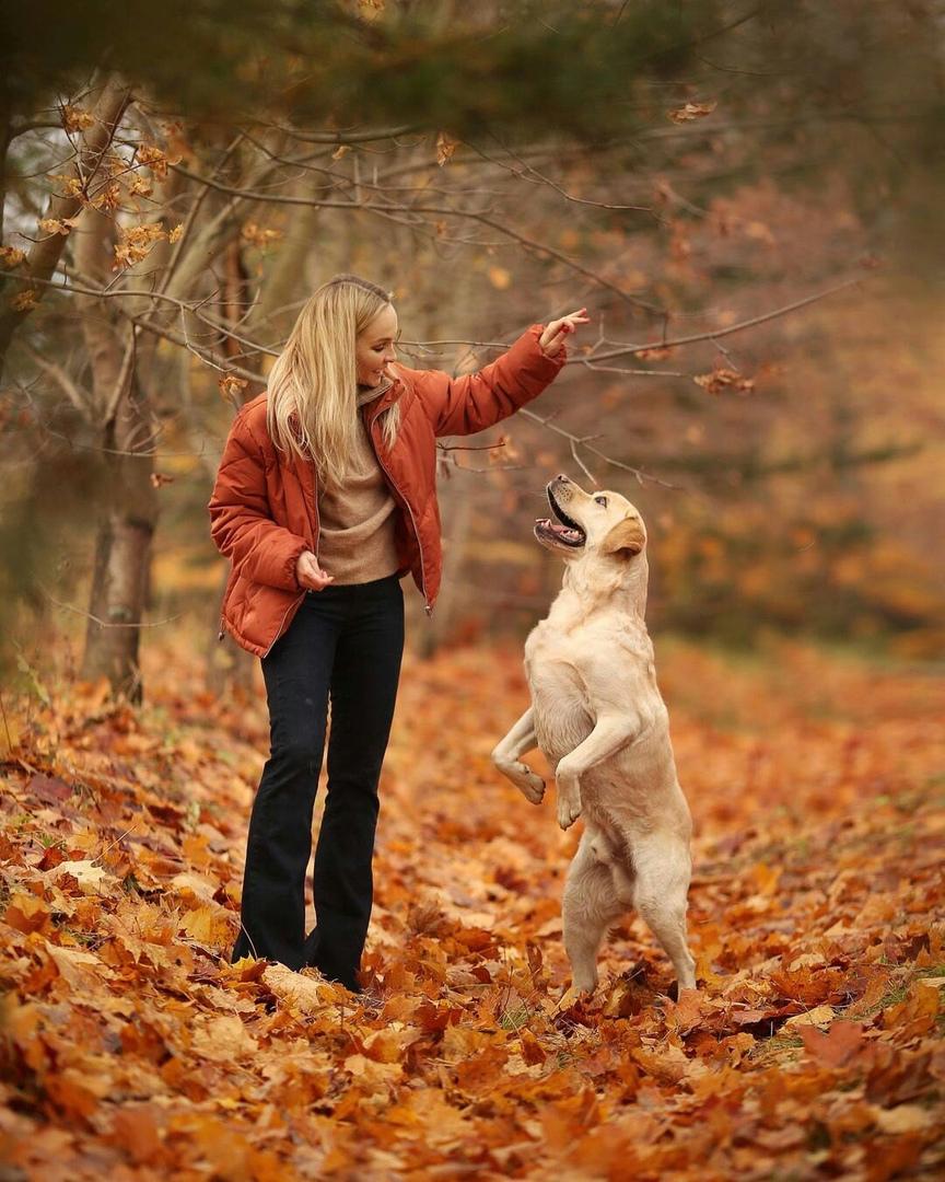 С собакой Натальи Варвиной случилась беда