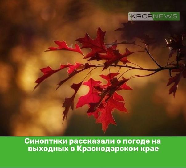 Синоптики рассказали о погоде на выходных в Красно...