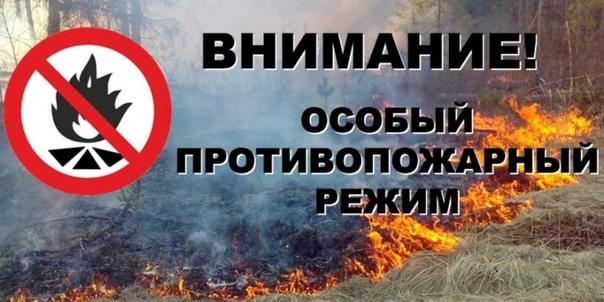 Балезинолес – филиал АУ УР «Удмуртлес» сообщает, что приказо