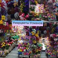 Умарцветы Усманов