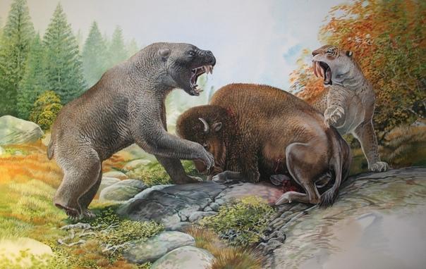 giant animals north america - HD1500×948