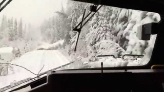 Train plows through trees after snow storm!