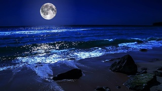 Fall Asleep On A Full Moon Night With Calming Wave Sounds - 9 Hours of Deep Sleeping on Mareta Beach