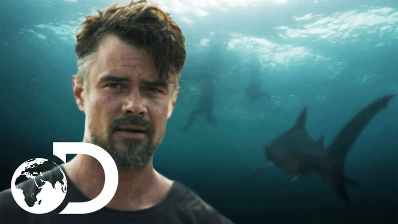 Capsized Blood In the Water | Trailer | Discovery UK
