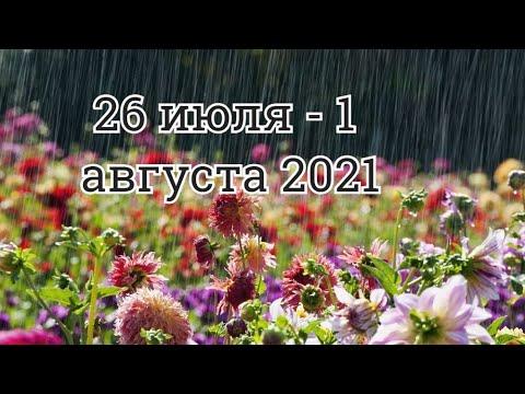 ТАРО прогноз на неделю 26 июля 1 августа 2021 для ВСЕХ ЗНАКОВ Тайм коды в описании