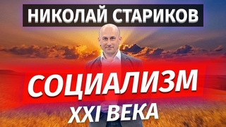 Николай Стариков о Социализме XXI века