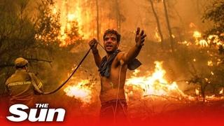 Wildfires rage across Algeria, Greece, Turkey, Italy and Russia