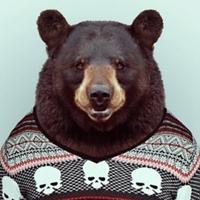 Фотография профиля Дмитрия Клещинского ВКонтакте