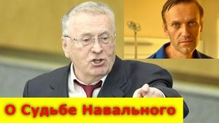 """Владимир Жириновский """"О Судьбе Навального"""""""